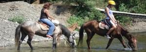 Horse-Safari_Marmaris_7